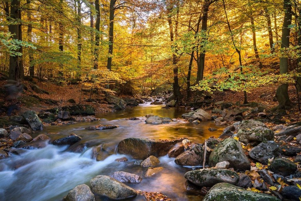 Nationalpark Harz, Fotospots